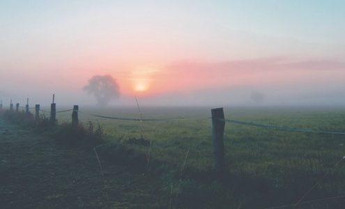 Weidezaun im Nebel