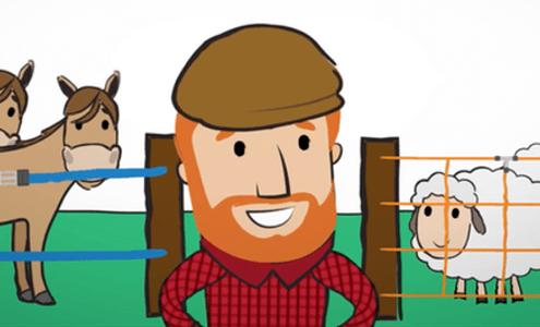 Mann vor Weidezaun mit Schafen und Pferden.